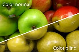 All You Need To Know About Color Blindness Md Health Com
