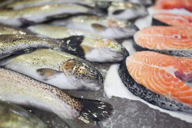 Best and worst cold water fish to eat md for Best eating fish