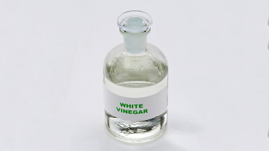 cuka putih